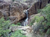 Waterfall at dripping springs
