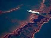 The Oil within the ocean