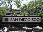 Website Wednesday: San Diego Zoo