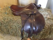 Mokie's Saddle!