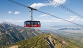 Ride the Gondola at the base of the mountain