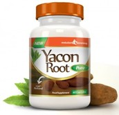 Top 3 Yacon Syrup Facts You Should Know