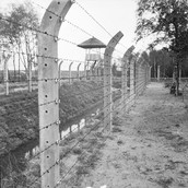 Barbed Wire uses in Concentration Camps