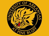 #3 University of Arkansas at Pine Bluff