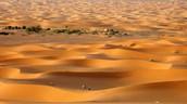(Bw)woestijnklimaat en (Bs)steppeklimaat