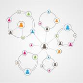 Członkostwo w Sieci