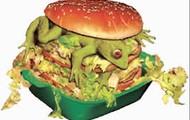 la hamburguesa del sapo.