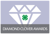 Diamond Clover Program