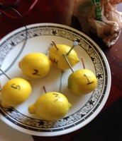 What The Lemon Batery Looked like