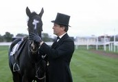 HOLMES RECOVERING THE HORSE