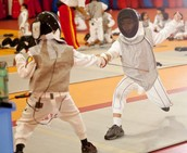 Try Fencing!