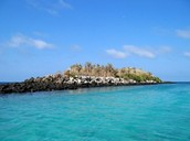 The island of Santa Cruz, Galapagos.