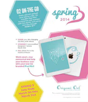 Spring 3    ipad Mini