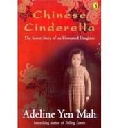 Chinese Cinderellas Journey