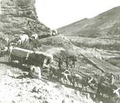 The Mormon Trail                                                                             By:Tori K