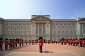 ♥ Buckingham Palace ♥
