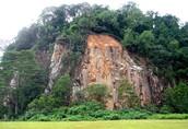 Mount Bukit Timah Hill
