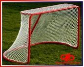 Net to score on