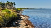 http://npplan.com/parks-by-state/north-carolina-national-parks/park-at-a-glance-cape-hatteras-national-seashore/cape-hatteras-national-seashore-water-sports/cape-hatteras-national-seashore-kayaking-and-canoeing/