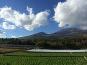Mt. Asama