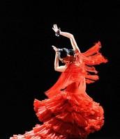 Flamenco dance (Spanish)