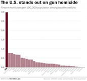 Does the U.S.A not have enough gun control?