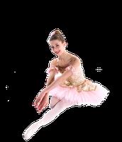 Ballet Intensive - 2 week, Level 2+
