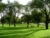The park the party will be at