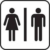 The Bathrooms Are Like The...