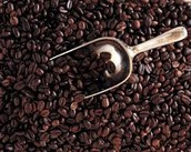 + Fresh Roasted Ethiopian beans