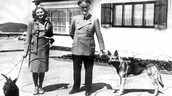 Hitler and his wife Eva pose with their dogs.