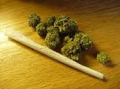 Marijuana in a joint