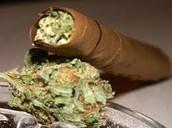 Marijuana rolled up
