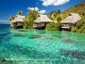 Yo viajé Florida Keys.