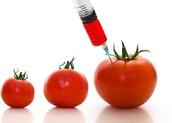 chemical genetic engineering