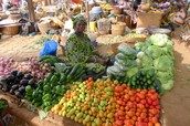 A lady getting ready for her market to open.