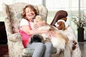 אישה שאימצה כמה כלבים מצער בעלי חיים.