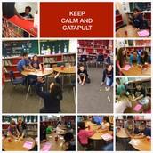 Catapult Fun!