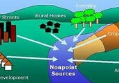 What is the difference between Non-point and Point Pollution?