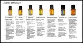 Ven a experienciar los usos de los Aseites Esenciales de doTERRA!!
