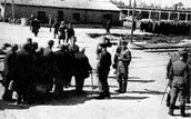 http://www.jewishvirtuallibrary.org/jsource/Holocaust/aumb1.html