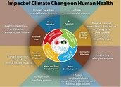Effects of global warming on humans