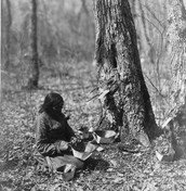 woman and children collecting maple sap