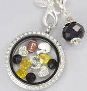 Steelers Stunning Silver