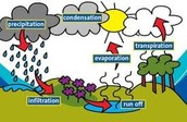 The Steps Of The Water Cycle