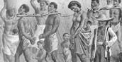 Chapter 21 Slavery