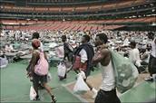 Superdome shelter