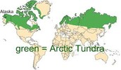 Low Biodiversity Biome: Arctic Tundra