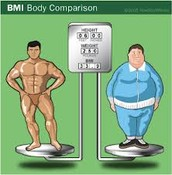 Body compostion