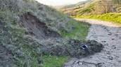 Soil slump